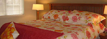 Cox Exterior plus Bedroom Vignette